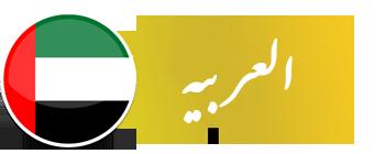 uae-entry-flag